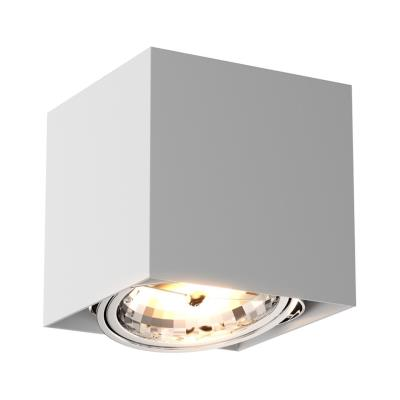 Светильник потолочный Zumaline BOX SL1 89947-G9 89947-G9