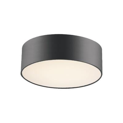 Светильник потолочный Favourite Cerchi 1514-2C1 1514-2C1