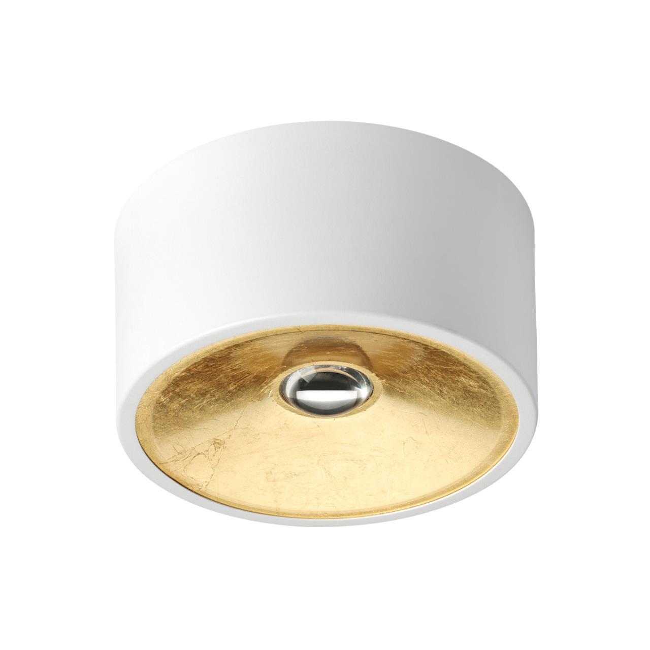 3892/1C HIGHTECH ODL20 белый с золотом Потолочной накладной светильник GU10 1*50W 220V GLASGOW